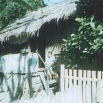 Naida's House