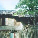 Yolanda' House